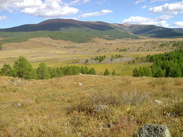 mongolie paysage de steppe
