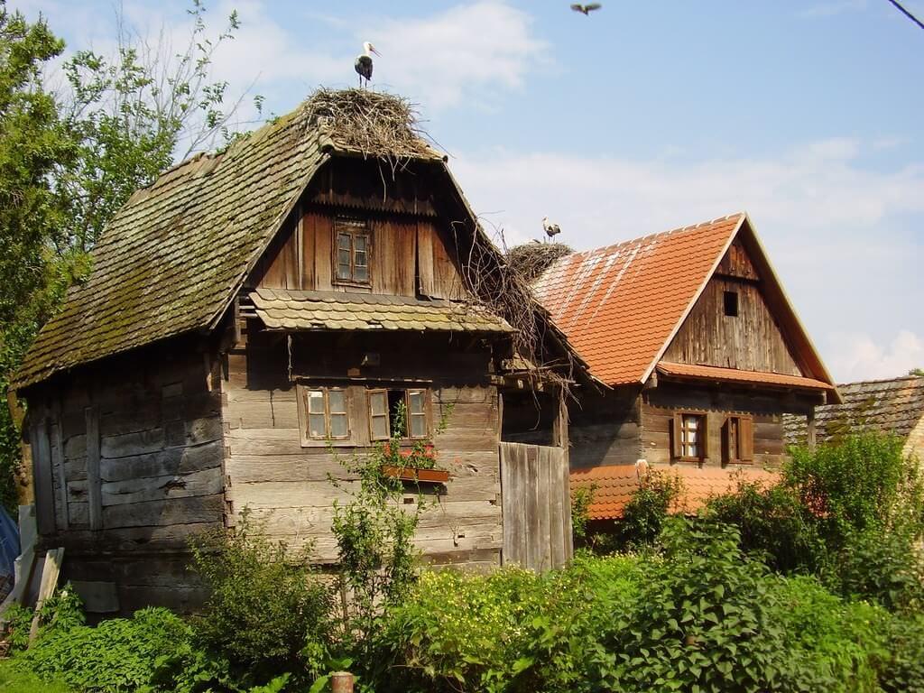 Lonjsko Polje maisons traditionnelles et cigognes
