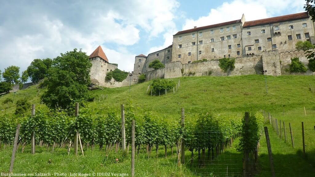 Burghausen am Salzach chateau et vignes