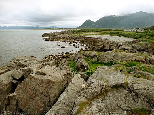 Lofoten mer arctique