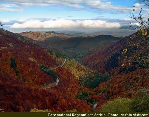 Parc national Kopaonik en Serbie