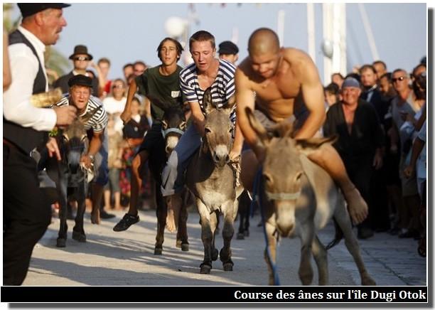 Dugi Otok course des ânes saljanske uzance