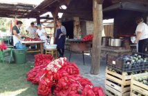 Ajvar en Croatie préparatifs autour des poivrons et des aubergines