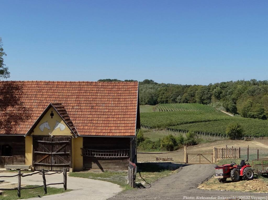 Agrotourisme en Croatie Centrale et Slavonie et bonnes adresses chez l'habitant 4