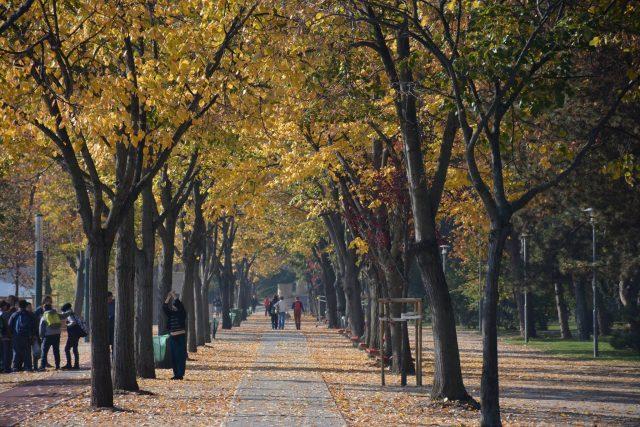 L'Île Marguerite à Budapest ; une île pleine de charmes en toutes saisons 12