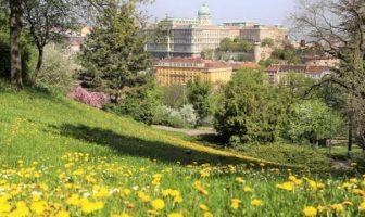 Budapest depuis les collines de Buda