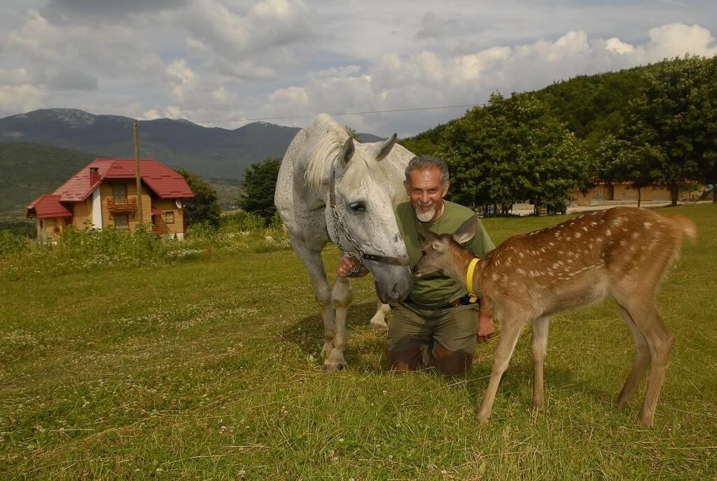 Branko Sokac Mrzlin grad à Plitvice