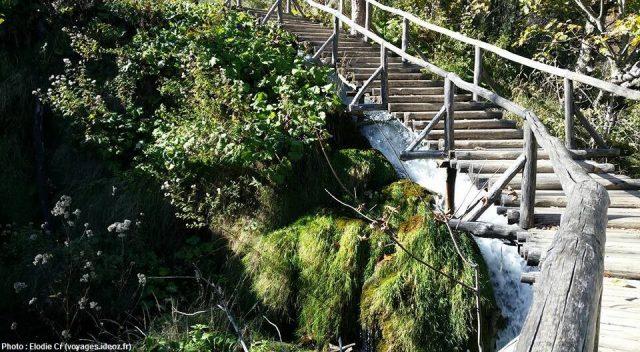 Sentiers balisés sur le circuit H de Plitvice