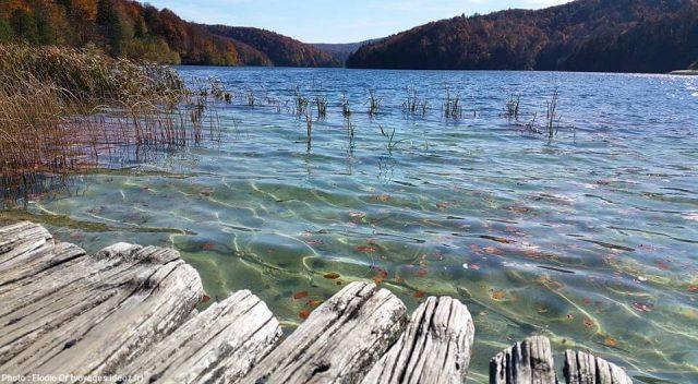 eau placide d'un lac du parc de Plitvice