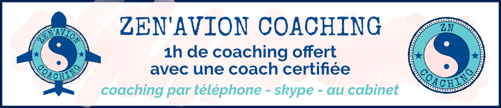 zen avion coaching offert