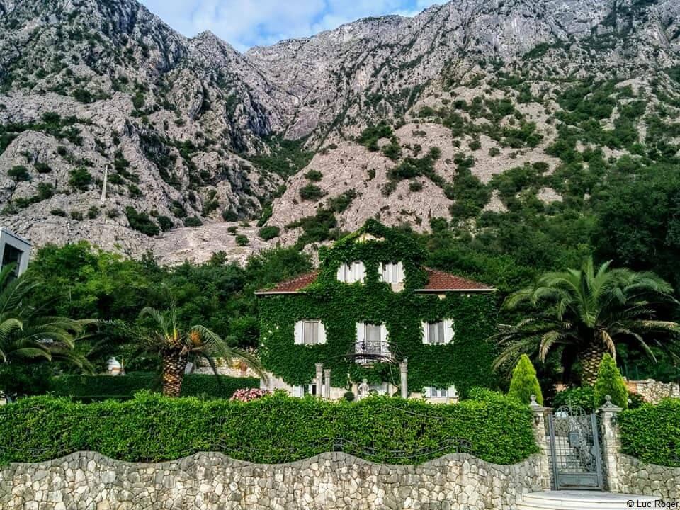 Maison et palmiers à Ljuta