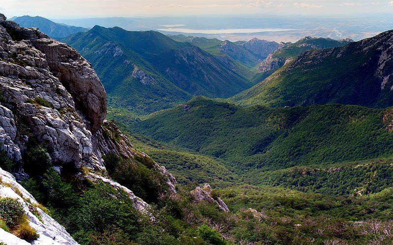 Massif de Paklenica forêts