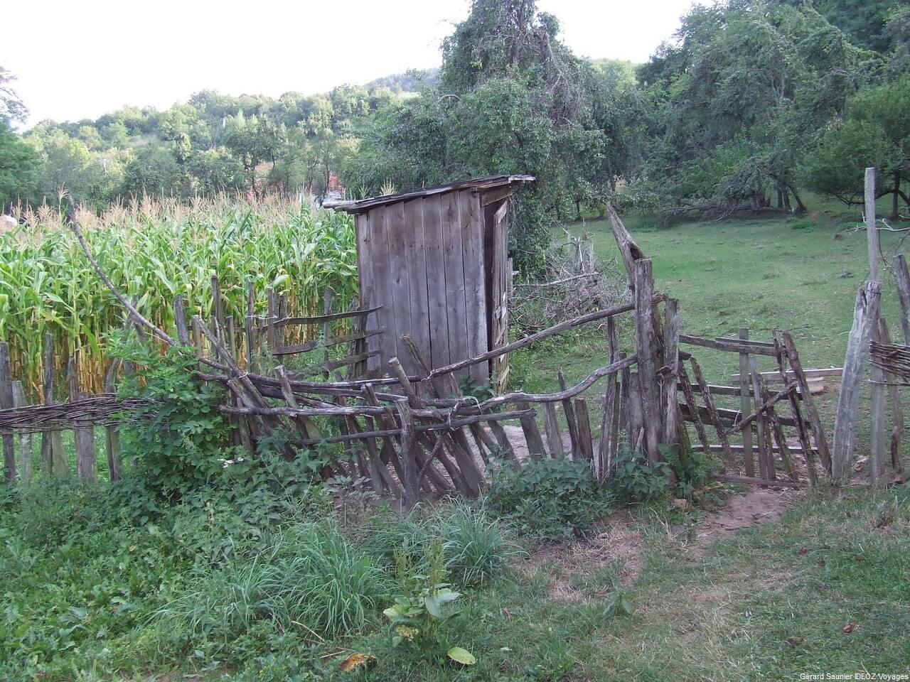 Rencontre inoubliable à Arilje en Serbie centrale : merveilleux souvenir 22
