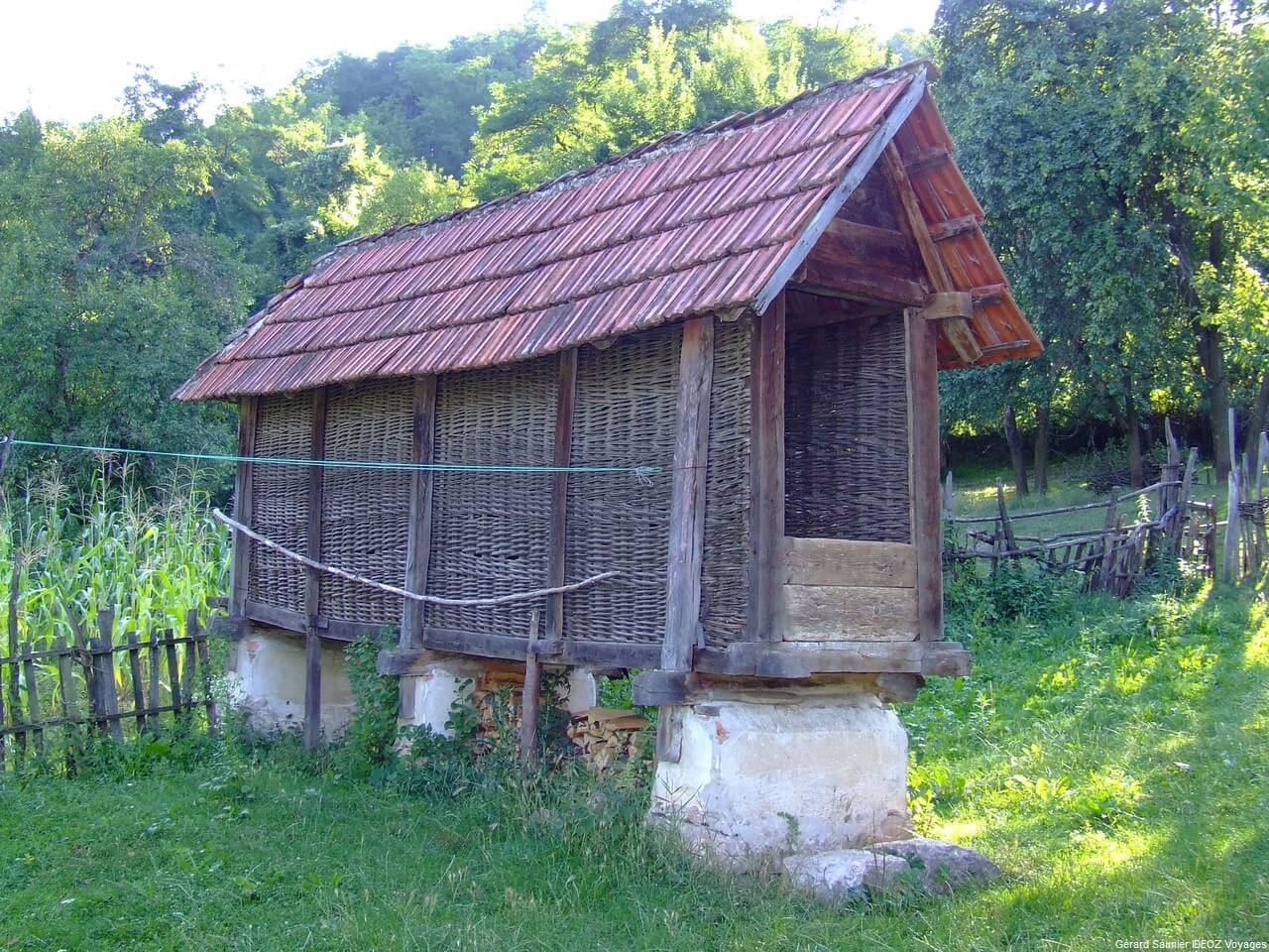 Rencontre inoubliable à Arilje en Serbie centrale : merveilleux souvenir 23