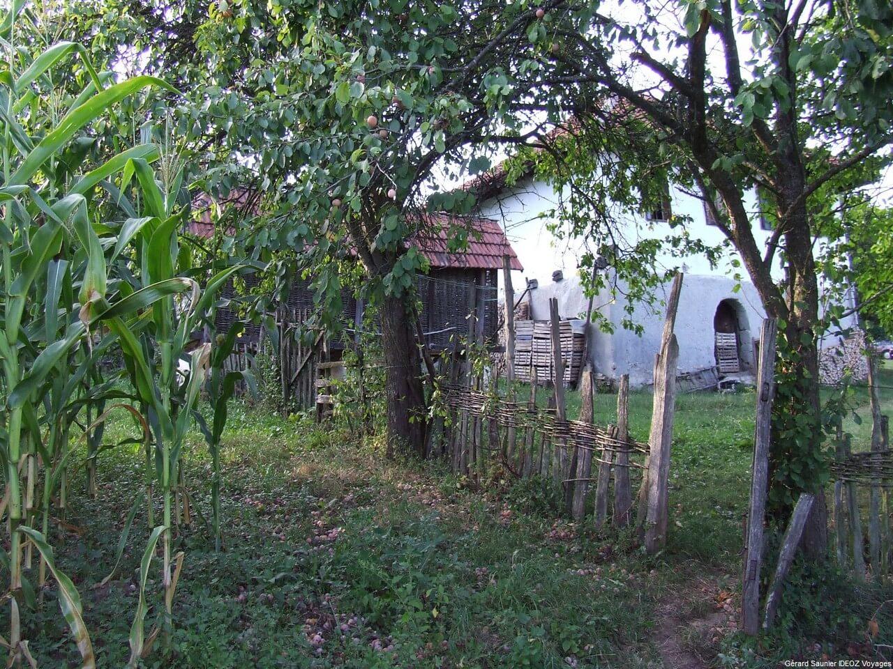 Rencontre inoubliable à Arilje en Serbie centrale : merveilleux souvenir 31