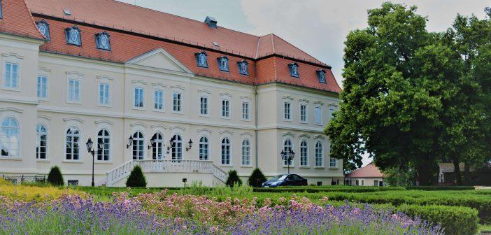 Tourisme vert en Hongrie: vivez la vie de château