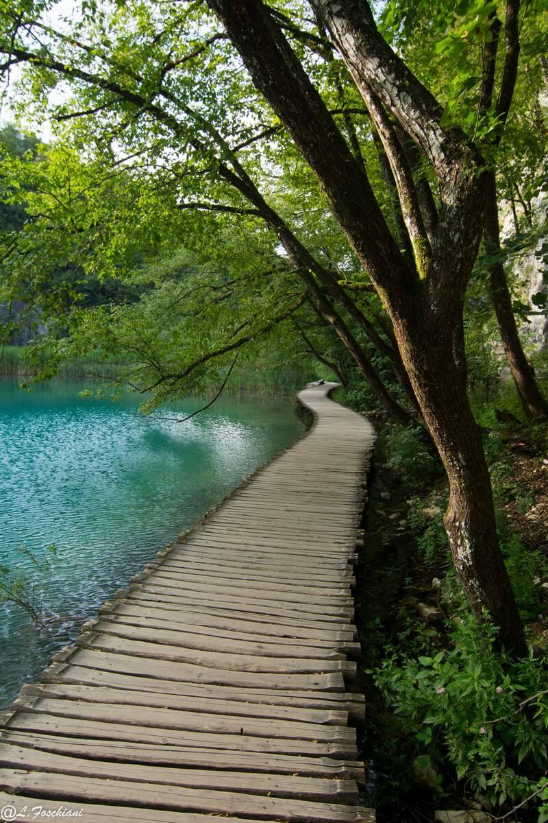Sentier au bord de l'un des lacs de Plitvice