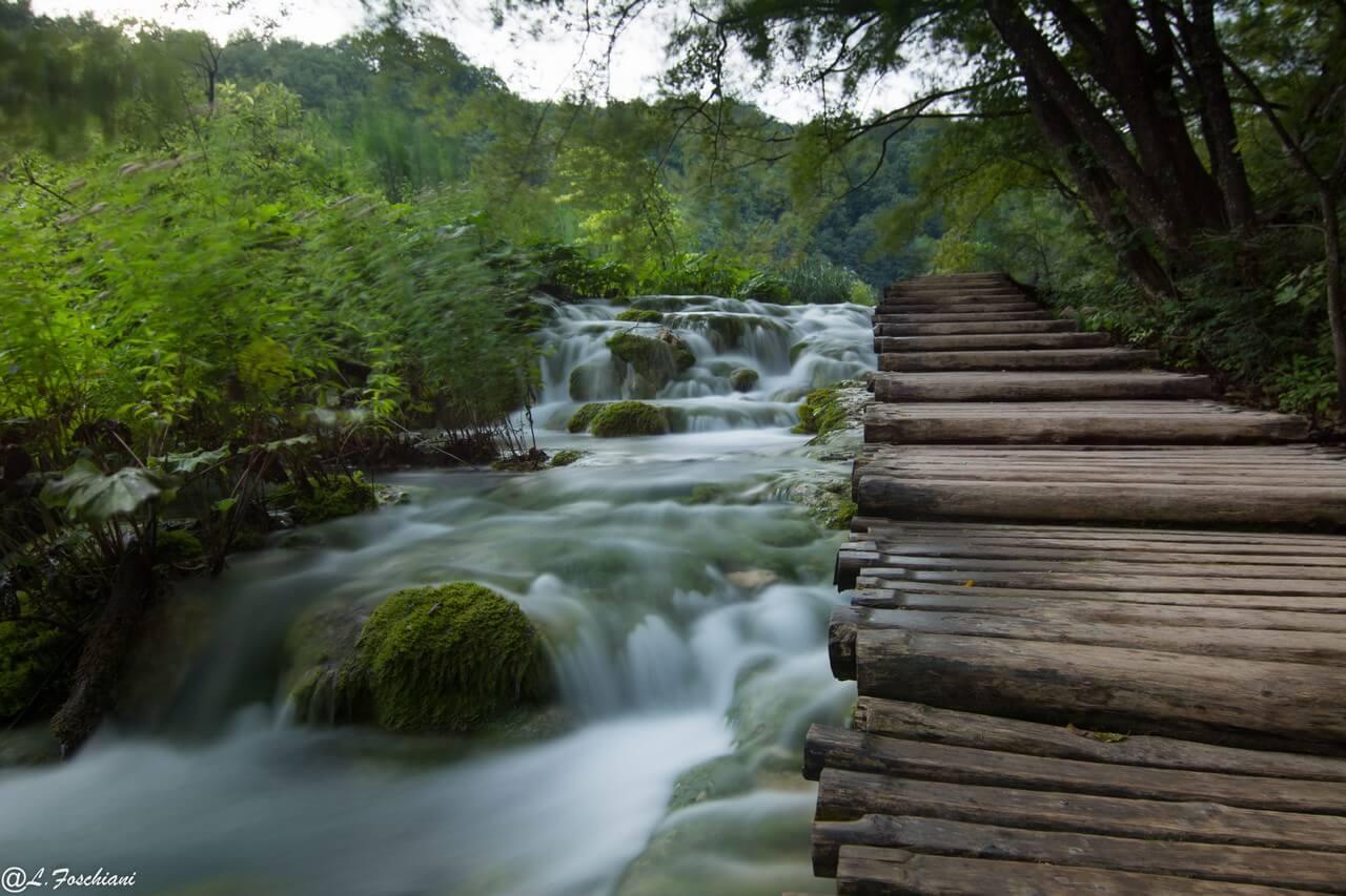 Sentiers de rondins bordé de ruisseaux à Plitvice
