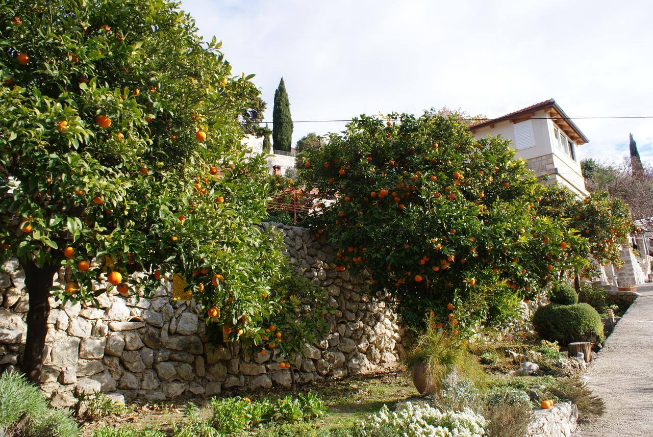 Three oranges appartment Trstno près de dubrovnik