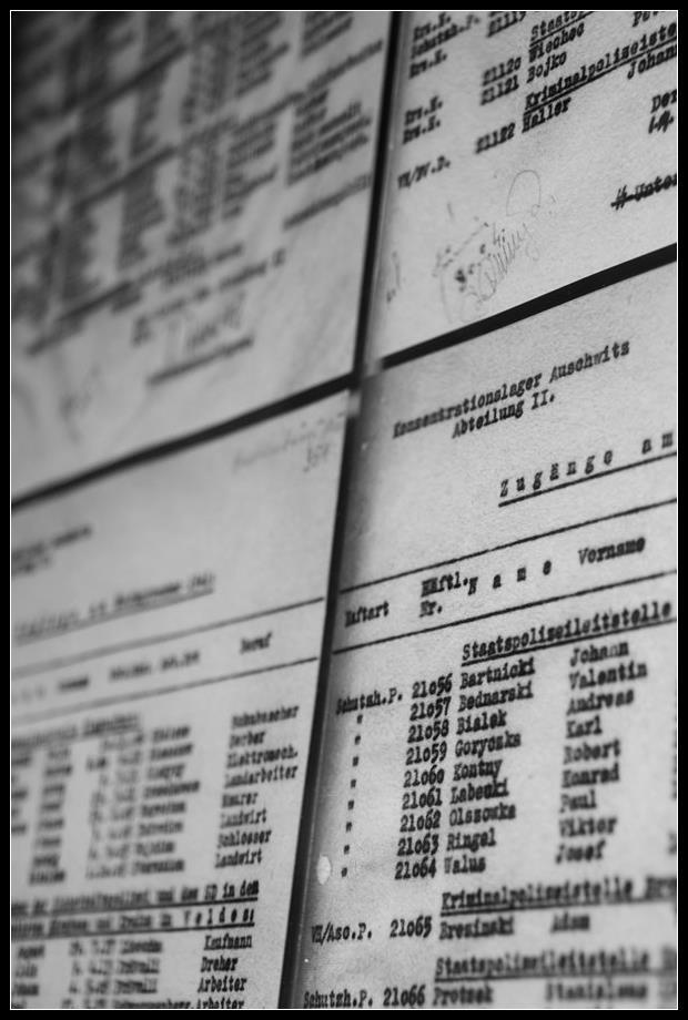 Visiter Auschwitz Birkenau: le plus grand camp de concentration nazi 9