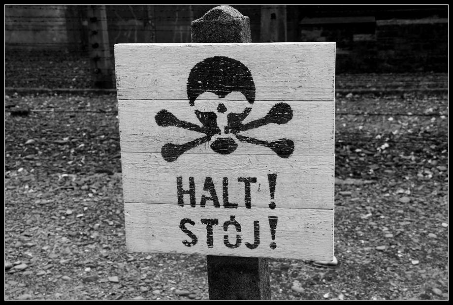 Visiter Auschwitz Birkenau: le plus grand camp de concentration nazi 2