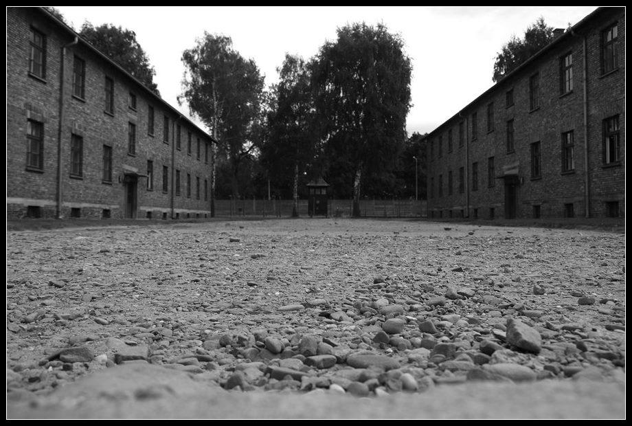 Visiter Auschwitz Birkenau: le plus grand camp de concentration nazi 3