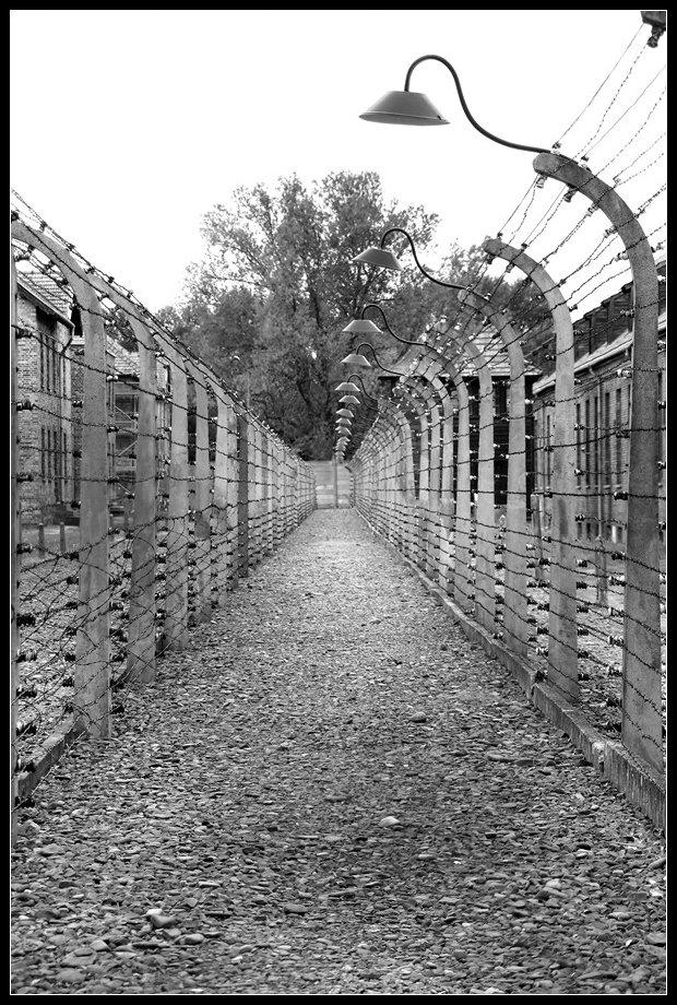 Visiter Auschwitz Birkenau: le plus grand camp de concentration nazi 14