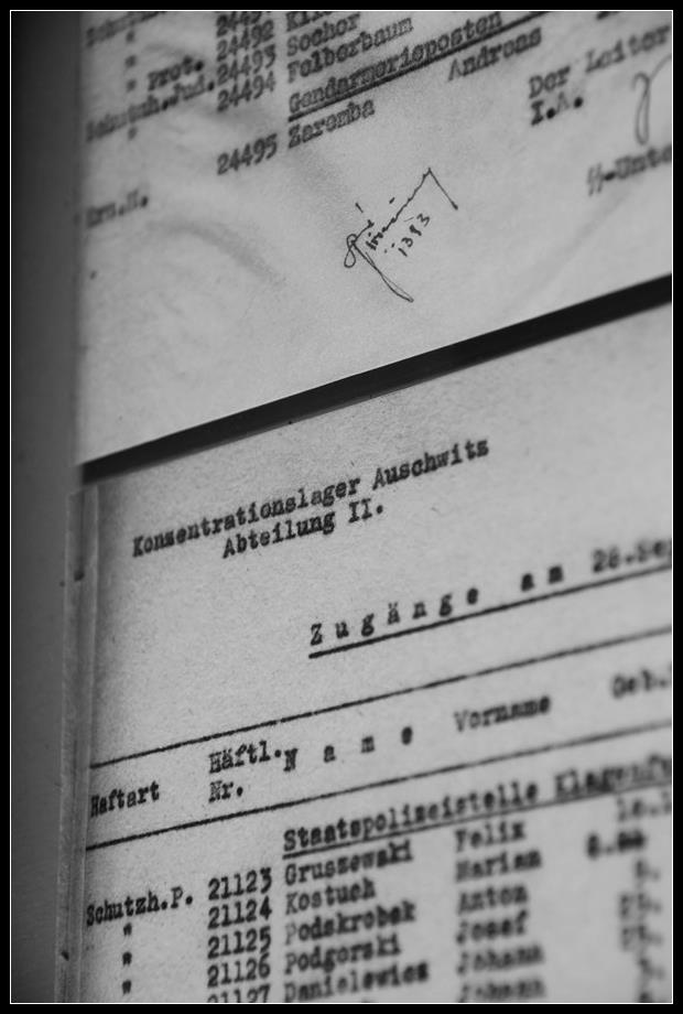 Visiter Auschwitz Birkenau: le plus grand camp de concentration nazi 5