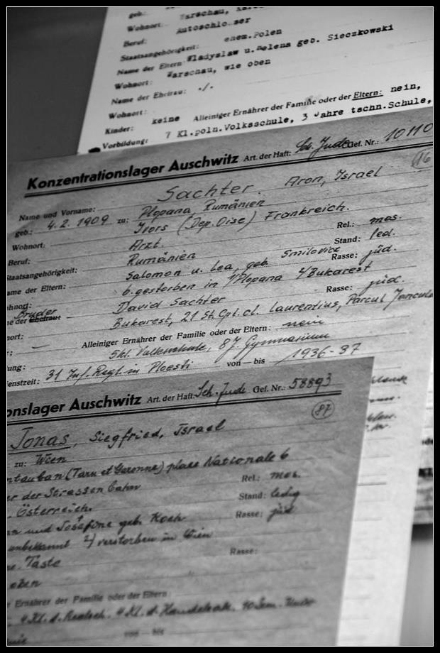 Visiter Auschwitz Birkenau: le plus grand camp de concentration nazi 6