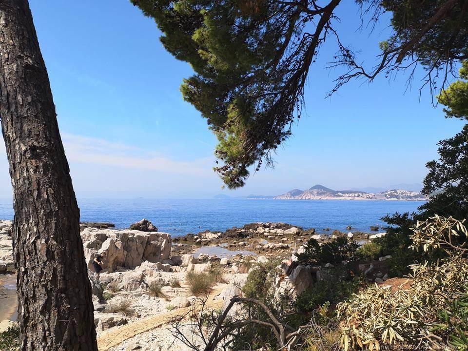 Crique rocheuse en Dalmatie