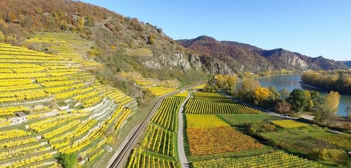 Sur les routes des vins en Europe ; 5 coups de coeur pour une évasion automnale