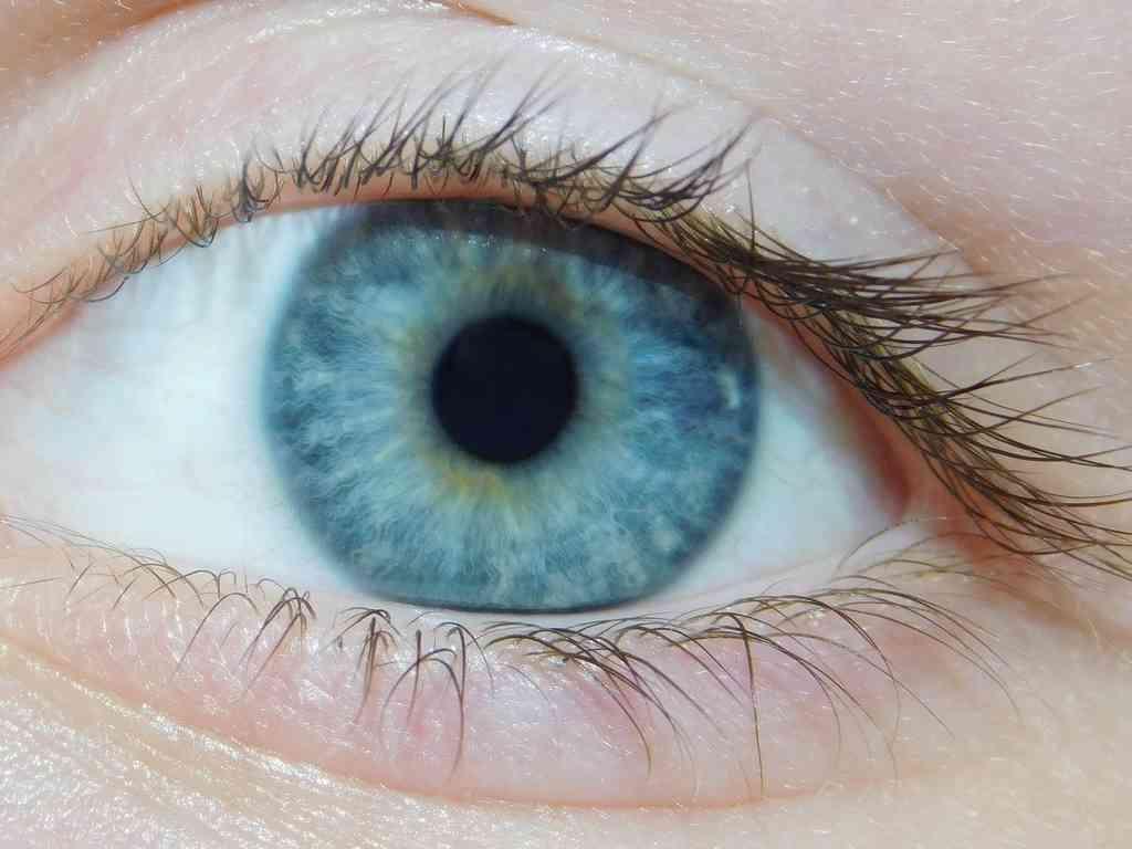 test de vision