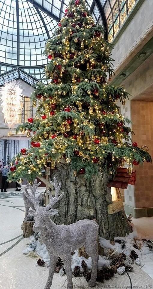 Budapest Elégant sapin décoré pour Noel et entouré de rennes
