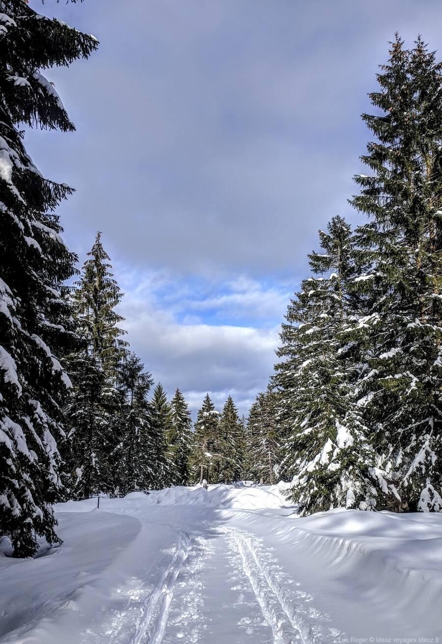 Randonnée sur un sentier alpin de Riebdoben