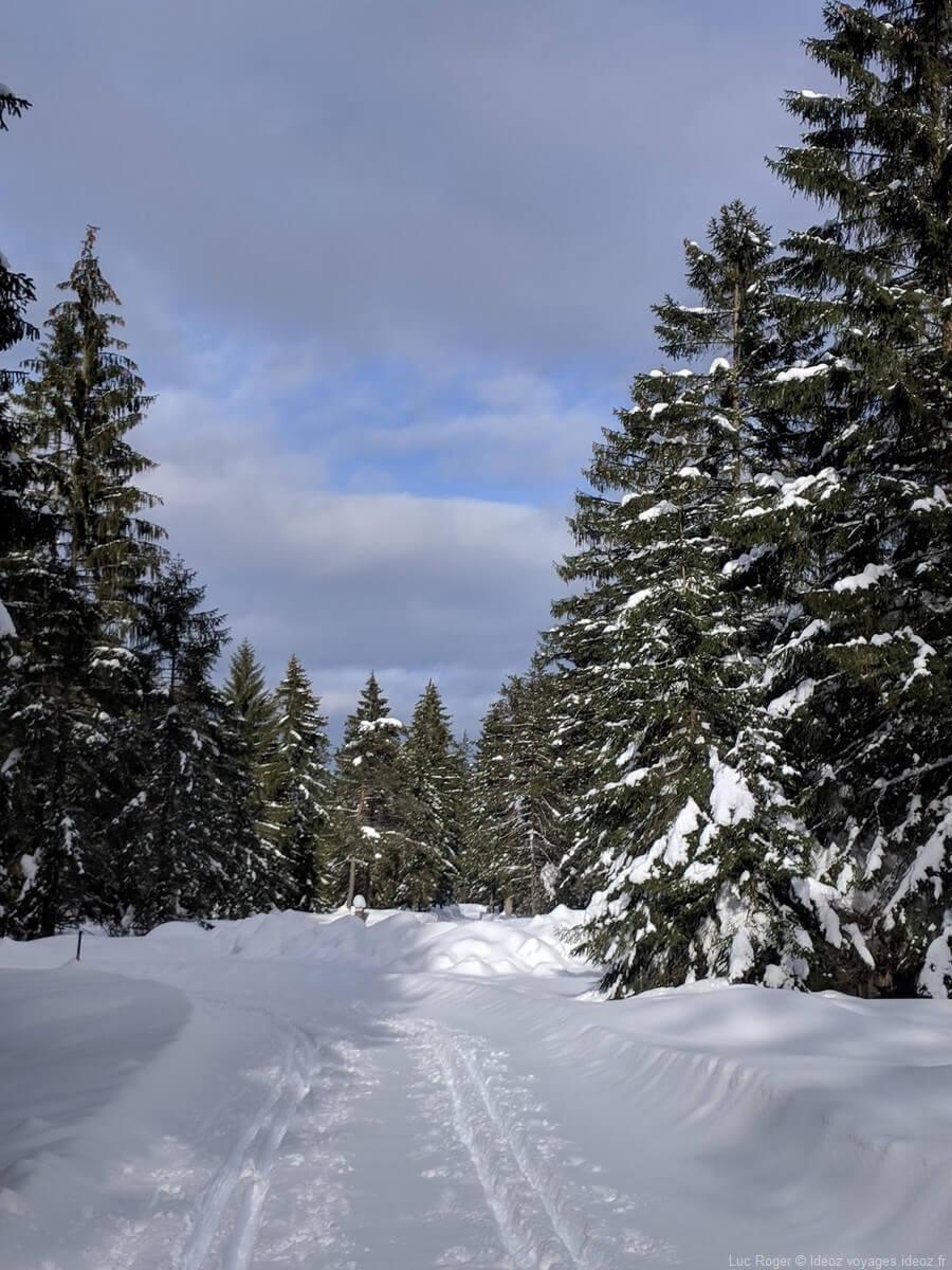 sentier enneigé à Mittenwald Rieboden