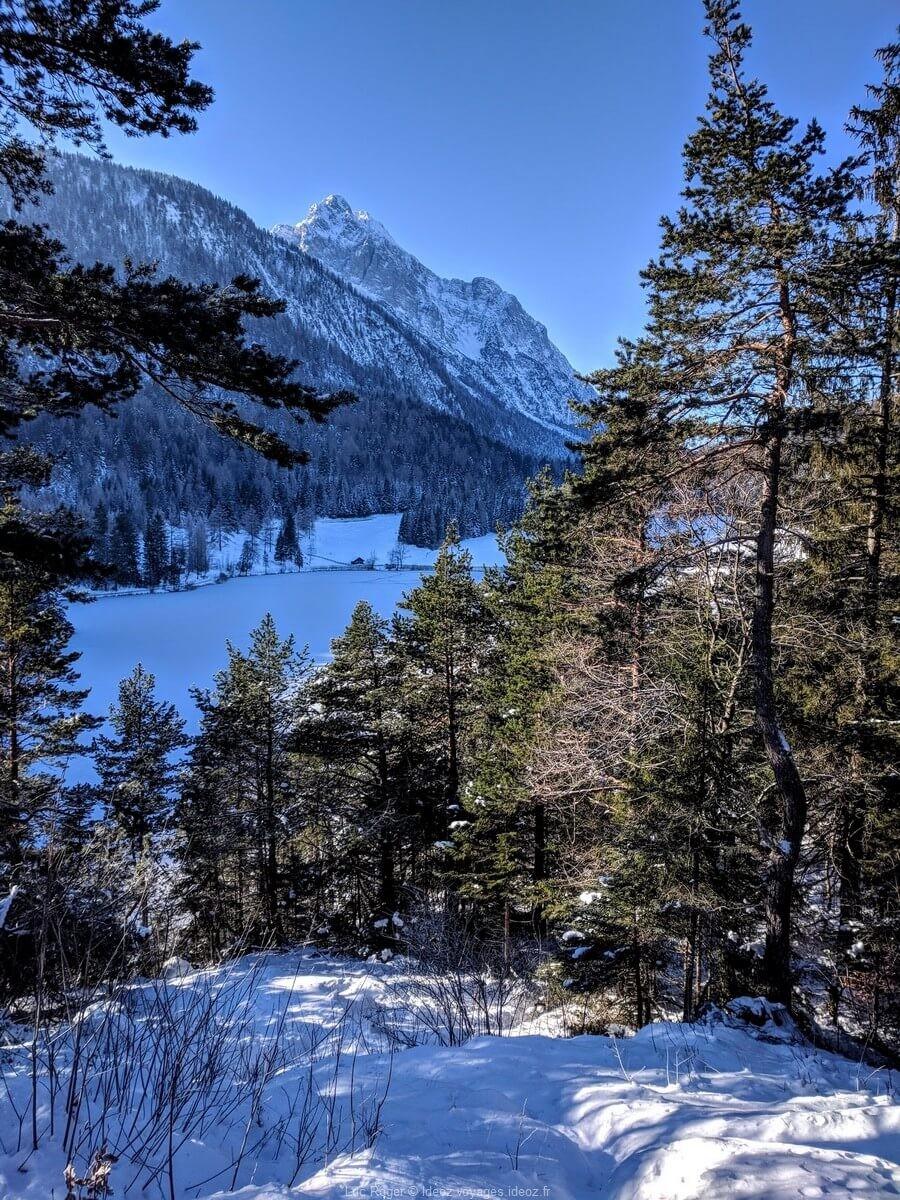 Foret près de Mittenwald sous la neige