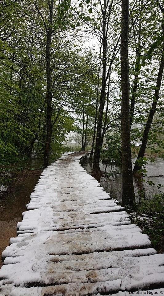 neige de printemps à plitvice