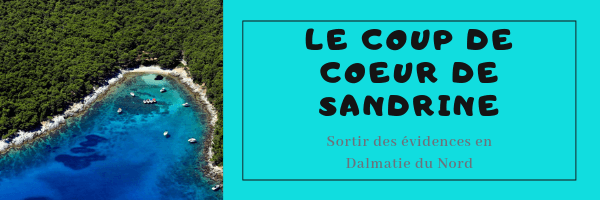 Rencontrez les dauphins en Croatie dans la région de Zadar, les îles Kornati et à Losinj 1