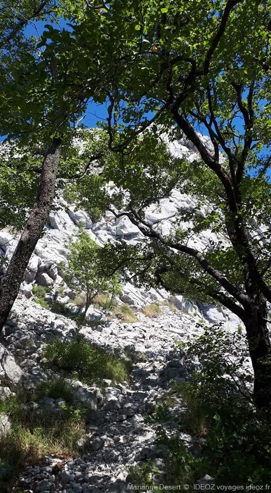 Randonnée jusqu'à Sveti Ilija, le point culminant de la presqu'île de Peljesac 8