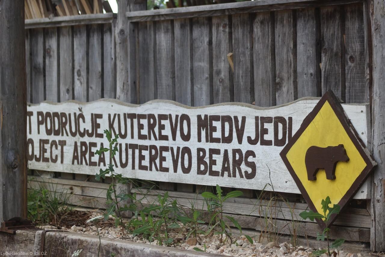 Refuge des ours de Kuterevo : rencontre avec les ours bruns de Croatie 17