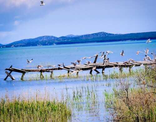 chemin des oiseaux parc de vrana