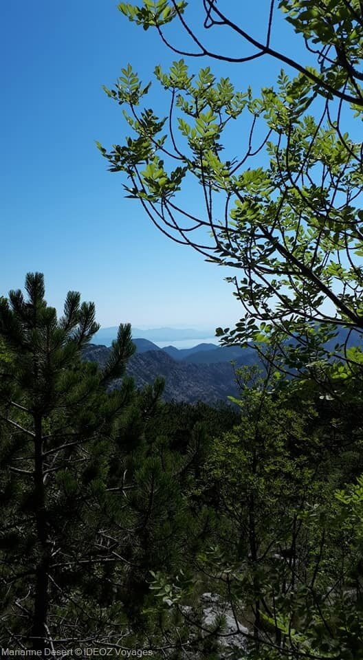 Randonnée jusqu'à Sveti Ilija, le point culminant de la presqu'île de Peljesac 3