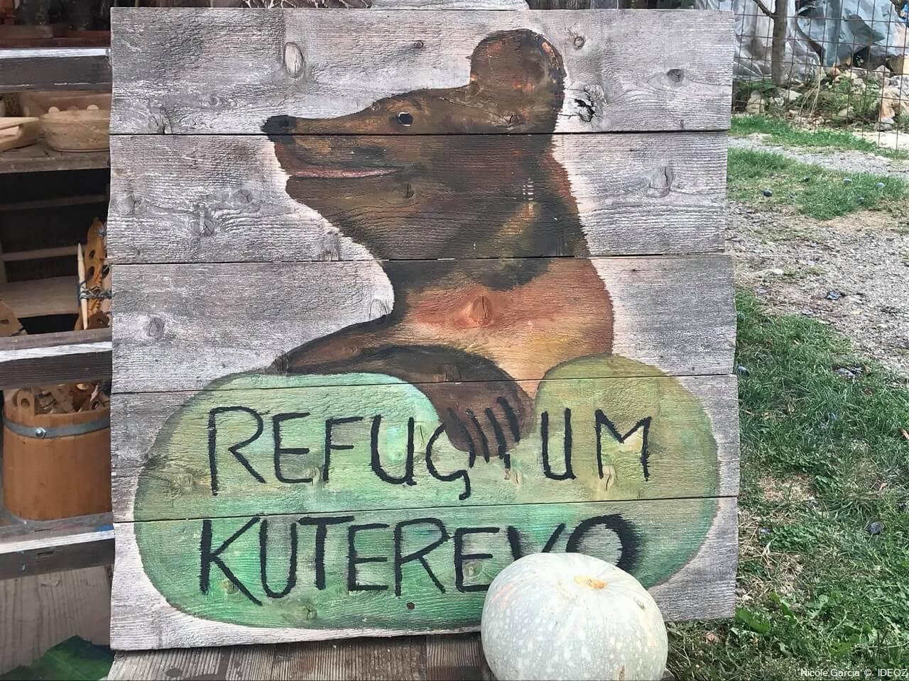Refuge des ours de Kuterevo : rencontre avec les ours bruns de Croatie 2
