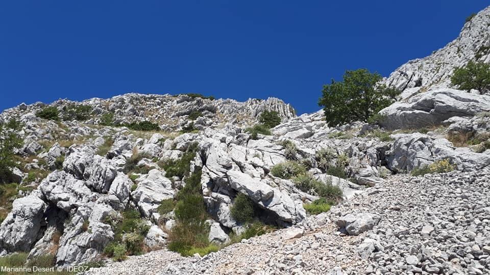 Randonnée jusqu'à Sveti Ilija, le point culminant de la presqu'île de Peljesac 10
