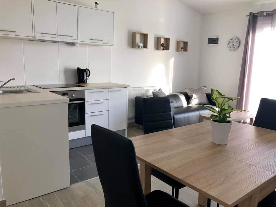 salle de séjour et cuisine de l'appartement luka à Vrana