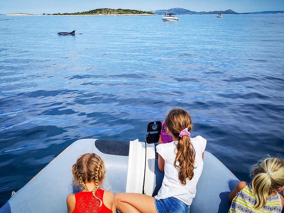 admirer les dauphins en famille à pakostane avec david maksan