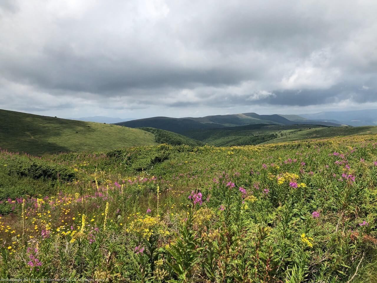 Randonnée à Stara Planina, sur la via dinarica voie verte en Serbie 18