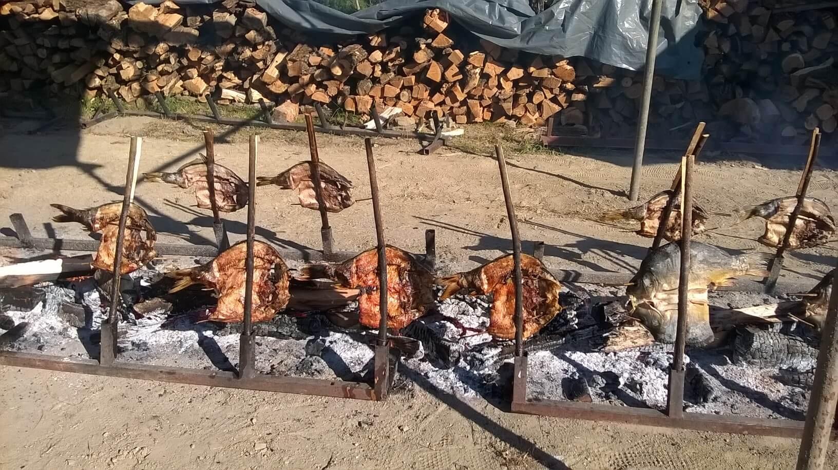 carpes de la drave cuisant sur les broches en slavonie