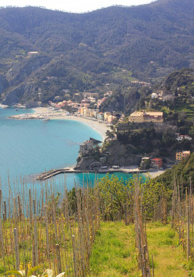 Cinque Terre, la Riviera Ligure du Levant (Voyage Italie) 35