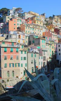 Cinque Terre, la Riviera Ligure du Levant (Voyage Italie) 17